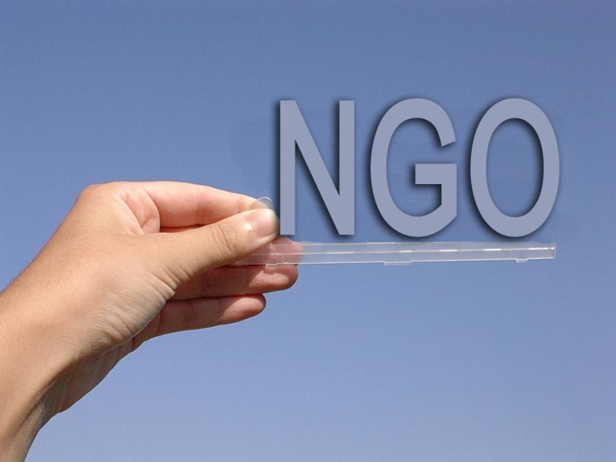 ngo_c6d49.jpg